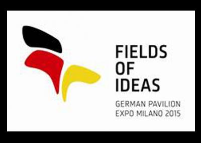 Fields of Ideas
